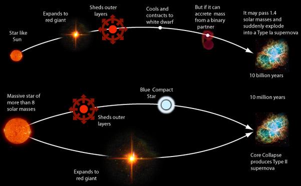 supernova characteristics