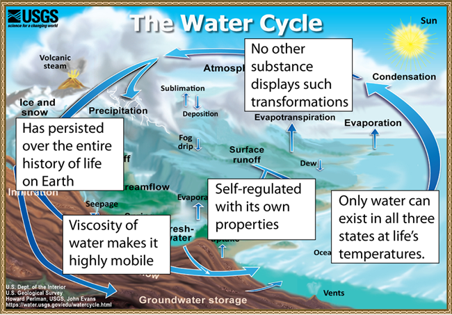 The hydrologic cycle when more complex mechanisms control the transport of molecules across the membranes into and out of cells the presence of water as the surrounding medium ccuart Image collections