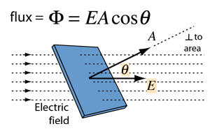magnitude definition physics
