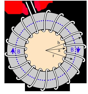 Toroidal Magnetic Field