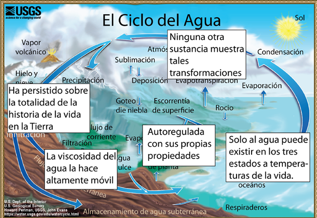The Hydrologic Cycle