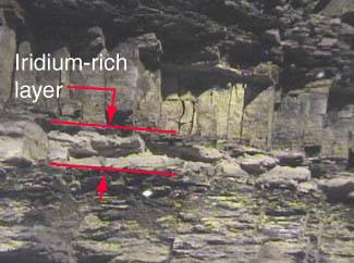 Resultado de imagen de Iridio en las capas fósiles