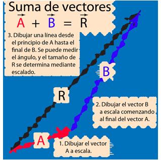 edee2bbd4fae2 La suma de vectores A y B gráficamente